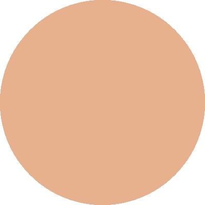 PT462-106