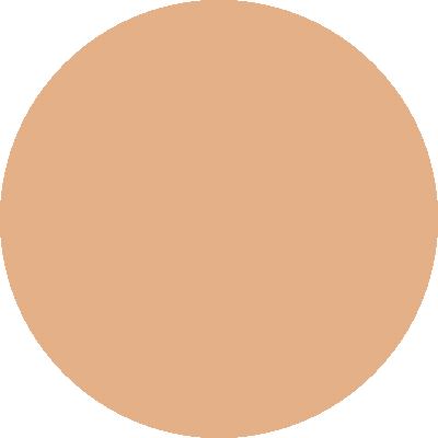 PT463-009
